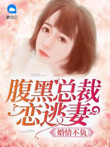 婚情不负:腹黑总裁恋逃妻